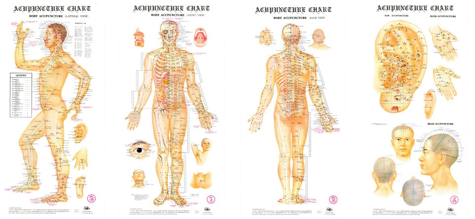 Oil Weight Chart >> Acupuncture Wall Charts (Set of 4)     Canada Clinic ...