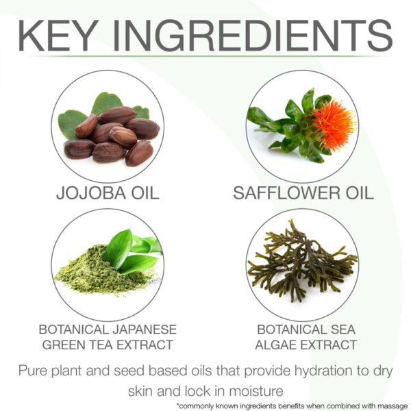 Bon-Vital-Key-Ingredients